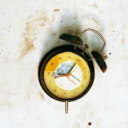 clock, pigment print using ultrachrome archival ink in innova, 103.2x62cm, 2003, edition of 12
